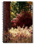 Country Color 28 Spiral Notebook