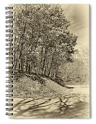 Country Curves And Vultures Sepia          Spiral Notebook