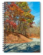 Country Curves And Vultures Spiral Notebook