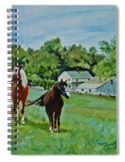 Country Horses Spiral Notebook