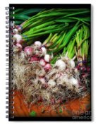Country Kitchen - Onions Spiral Notebook