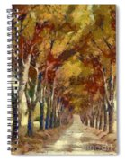 Country Road In Autumn Spiral Notebook