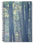 Country Woodlands Spiral Notebook