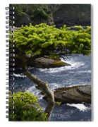 Courageous Tree  Spiral Notebook