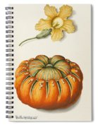 Courgette And A Pumpkin Spiral Notebook