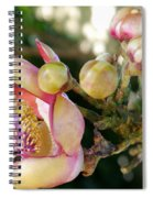 Couroupita Guianensis - Cannonball Tree Flowers Spiral Notebook