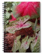 Courtyard Caladium Spiral Notebook