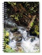 Covell Creek 4 Spiral Notebook