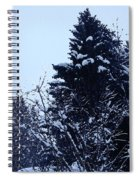 Covered Snow Trees Spiral Notebook