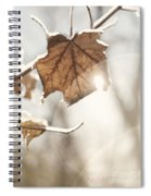 Covered With Ice Maple Leafe On A Sunny Day Spiral Notebook