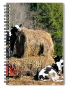 Cow Country Buffet Spiral Notebook