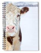 Cow - Fine Art Photography Print Spiral Notebook