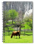 Cow Grazing In Pasture In Spring Spiral Notebook
