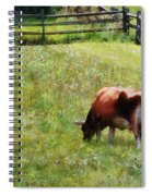 Cow Grazing In Pasture Spiral Notebook