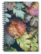 Cow Parsnip Leaves In The Fall Spiral Notebook