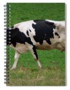 Cow Path Spiral Notebook