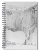 Cow Pencil Drawing Spiral Notebook