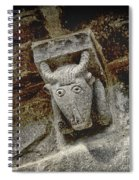 Cow Representation Spiral Notebook