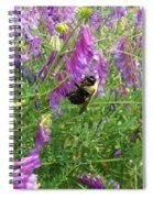 Cow Vetch Wildflowers And Bumble Bee Spiral Notebook