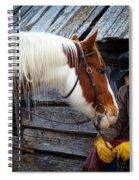 Cowboy Blues Spiral Notebook