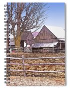 Cows At Jenne Farm Spiral Notebook
