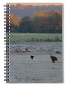Cows At Sunrise Spiral Notebook