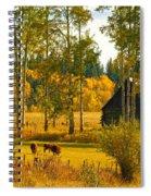 Cows Grazing 3 Spiral Notebook