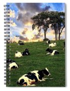 Cows In Pasture Spiral Notebook