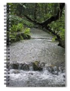 Coyaba River Gardens 6 Spiral Notebook