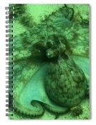 Cozumel Octopus Spiral Notebook