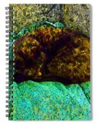 Cozy Calico Cat Spiral Notebook