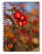 Crab Apple Bright Spiral Notebook
