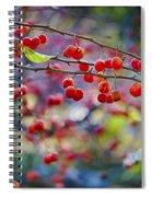 Crab Apples 2 Spiral Notebook
