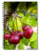 Crabapple Hill Spiral Notebook