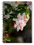 Crabapple Intricacies Spiral Notebook