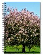 Crabapple Orchard Spiral Notebook