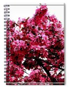 Crabapple Tree Blossoms Spiral Notebook