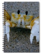 Crabby - Atlantic Ghost Crab Spiral Notebook