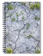 Cracked Earth Background Spiral Notebook