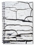Cracked Wood Pattern Spiral Notebook