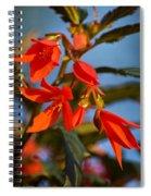 Crackling Fire Begonia Spiral Notebook