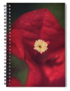 Cradle Me In Your Arms Spiral Notebook