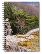 Craigs Of The Mountain Spiral Notebook