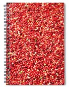 Cranberry Harvest 3 Spiral Notebook