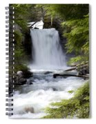 Crandel Creek Falls Spiral Notebook
