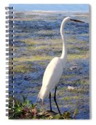 Crane At Pond Spiral Notebook