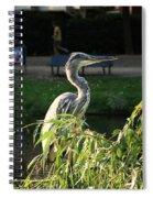 Crane In Evening Light Spiral Notebook
