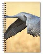 Crane Over Golden Field Spiral Notebook