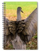 Crane Spreading Wings Spiral Notebook