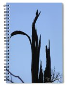 Crane Wood Spiral Notebook